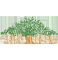 coexistence workshop – jeevan vidya workshop-shivir – coexistential philosophy